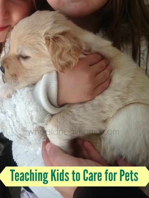 Teaching Kids to Care for Pets