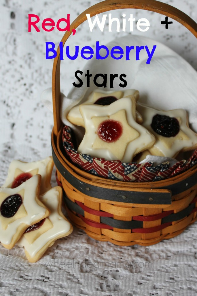 Red White and Blueberry Stars