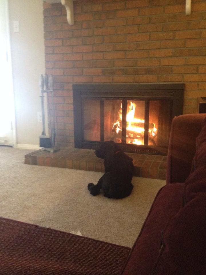 yoda fire